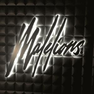 Ledreclame Malelions - Portfolio Brouwers Reklame